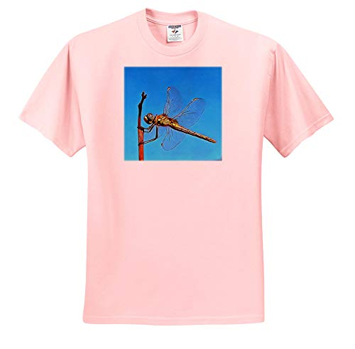Taiche - Acrylic Painting - Dragonfly - Hang On in There Artistic Dragonfly - T-Shirts - Adult Light-Pink-T-Shirt Medium (ts_299365_35)