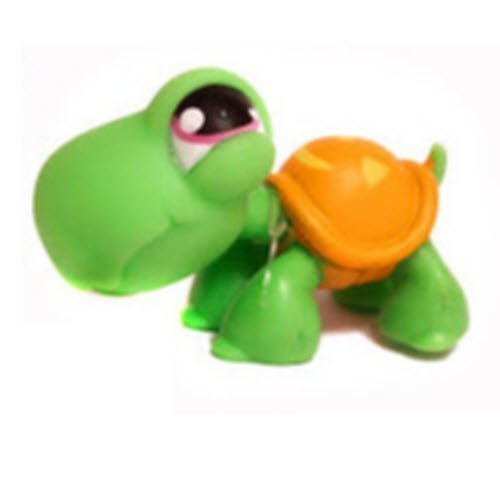 Littlest Pet Shop Halloween Turtle # 433 (Green with an Orange Jack O' Lantern Shell and with Purple Eyes) - LPS Loose Figures - Replacement Pets - LPS Collector Toy (Out of Package/OOP)