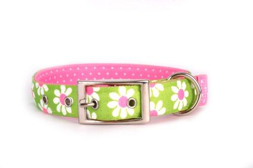 Yellow Dog Design Uptown Collar, Large, Green Daisy on Pink Polka, Small Dots (Collar Posh Pet)