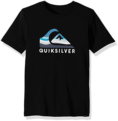Quiksilver Boys' Big SWELL Vision TEE, Black, XL/16 from Quiksilver