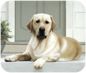 Yellow Labrador On Porch Lab Dog Puppy Mouse Pad MousePad by Fiddler's Elbow