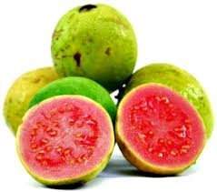 Red Guava Pictures