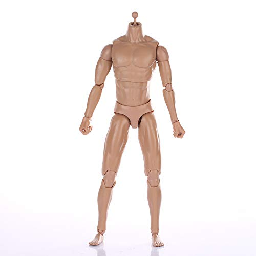ZYAQ 1/6 Scale Narrow Shoulder Action Figure Male Muscular Body Toys Doll with Accessories fits TTM18 TTM19 Hot - Action Body Figure