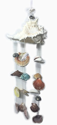 WD-Thailand seashell Windchimes handmade exquisite Seashell Wind chimes Mobile Nautical Hanging big Conch shell top mobile great for door Window wall indoor & outdoor decor 5.5w x 17L natural color For Sale