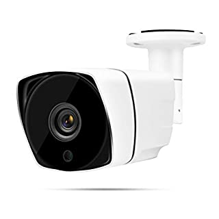 Outdoor Security Camera,4-in-1 Bullet Camera Outdoor HD Night Vision Waterproof AHD/TVI/CVI/CVBS for Security Surveillance(2 PM PAL)