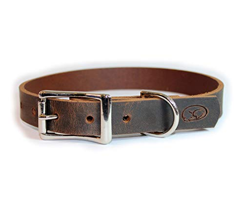 sleepy pup Full Grain Thick Leather Dog Collar