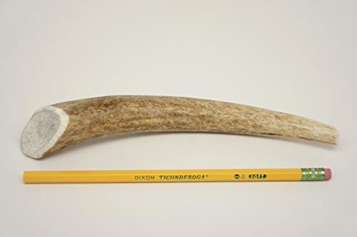 Elk Antlers for Dogs, ONE (1) Piece Medium Elk Antler Chew Bone for Medium Dogs, 6