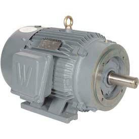 Worldwide Electric T-Frame Motor PEWWE15-18-254TC, TEFC, GP, 3 PH, Rigid-C, 254TC, 18.3 ()