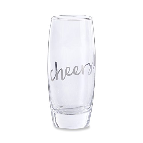 Aspen Cheers Stemless Champagne Silver product image