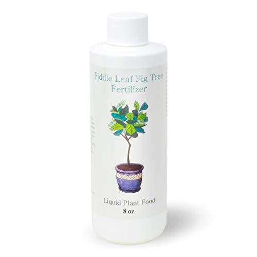 Fiddle Leaf Fig Tree Fertilizer | Ficus Plant Food |