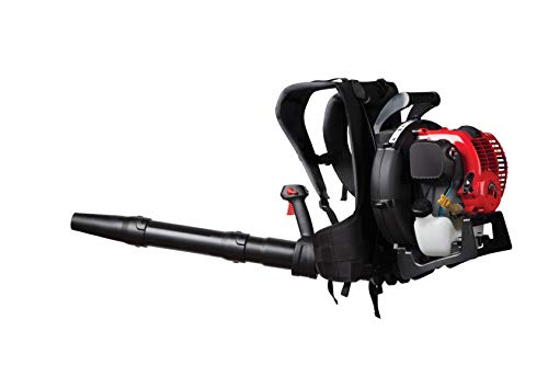 CRAFTSMAN BP410 32cc, 4-Cycle Full-Crank Engine Backpack Gas Powered Leaf Blower (Best Gas Powered Leaf Blower)