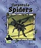Tarantula Spiders, Julie Murray, 1577657292