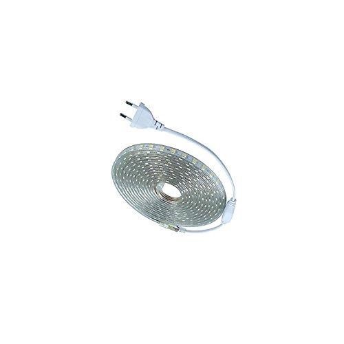 Desineo Ruban LED Blanc Chaud 220V au mè tre pour é clairage inté rieur/exté rieur