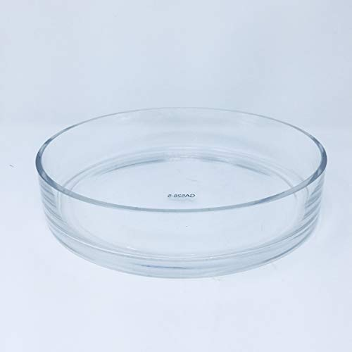 """Glass Cylinder Bowls - Serene Spaces Living Low Glass Bowls – Low-Profile Bowls for Floating Candles, 10"""" Diameter, 2"""" Tall"""