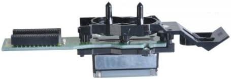 DX4 Base de agua cabezal de impresión para Epson: Amazon.es ...