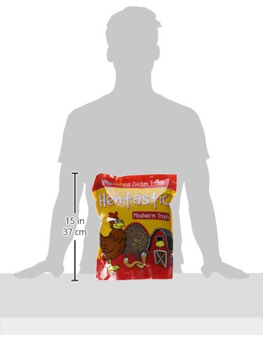 Unipet Usa 084112 Hentastic Dried Mealworms Chicken Treats, 30 oz, 1Piece