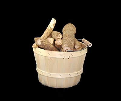 Horseradish Roots Natural Organic Ready to Plant 1 Pound By Growerssolution