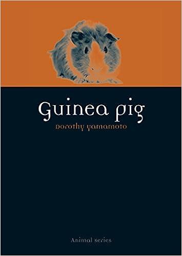 Guinea Pig Animal Yamamoto Dorothy 9781780234267 Amazon Com Books