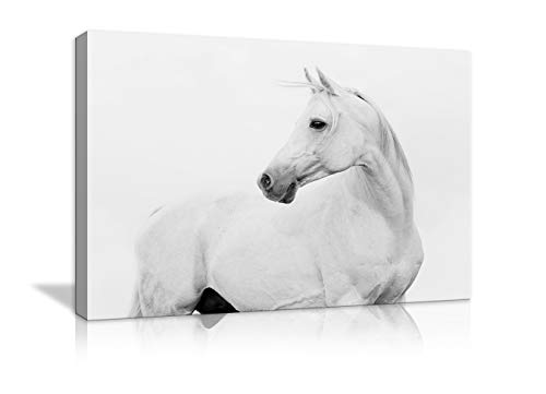 AMEMNY Modern White Horse Canvas Modern Wall Art Painting Posters and Artwork HD Prints Pictures Decor for Living Room Framed Stretched Ready to Hang