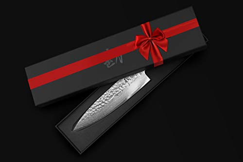 KAN Core Chef Knife 8-inch AUS-10 67 layers Damascus for aspiring home chefs (our Kickstarter chef knife) (Hammered AUS-10 Blade, Ebony wood handle) by KAN (Image #3)