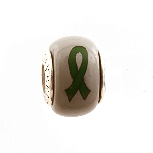 Green Ribbon Awareness Kidney Cancer Organ Donations Leukemia Cerebral Palsy Mental Health Awareness Ribbon Bead Charm for Add-A-Bead Bracelets Clay & Sterling Silver by MAYselect