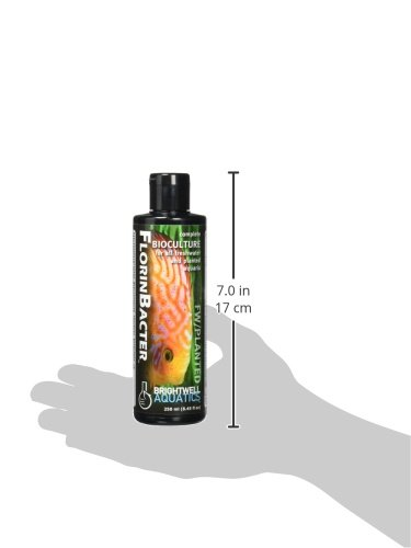 Brightwell Aquatics ABAFNB250 Florinbacter Fresh Water and Plant Care Products for Aquarium, 8.45-Ounce by Brightwell Aquatics (Image #2)