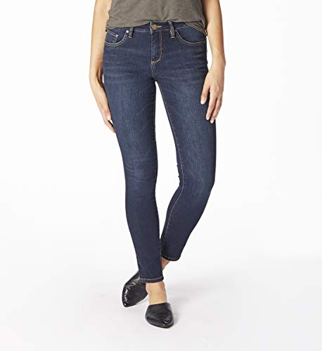 (Jag Jeans Women's Sheridan Skinny Jean, Indio, 2)