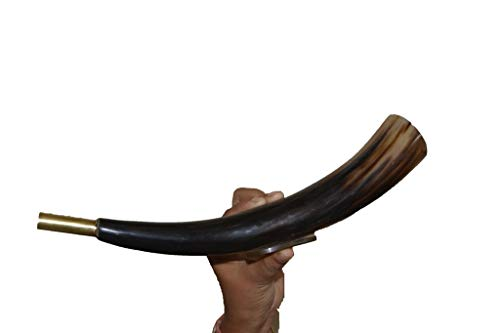 Air Horn Instruments - Buddha4all Sounding Bugle Horn Blowing Viking Norse Medieval 9 inches Large Polished Horn Shofar Horn Natural Finish Shofar Traditional Handcraft Horn (Horn Shofar Stand)