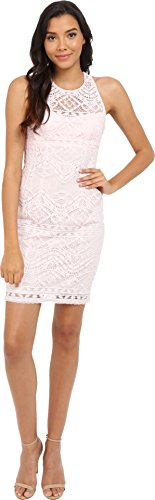 Nanette Lepore Shift (Nanette Lepore Women's Antique Lace Shift Dress, Pearl Pink, 10)