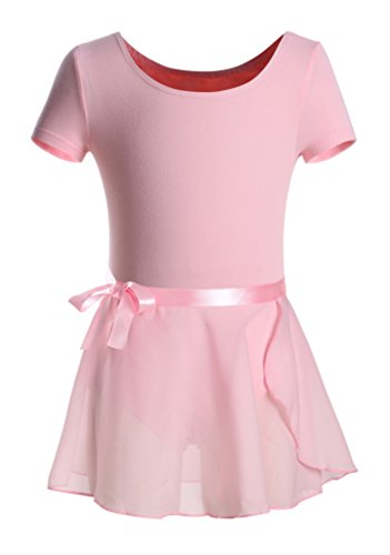 DANSHOW Girls Short Sleeve Leotard with Skirt Kids Dance Ballet Tutu Dresses (2-4, Pink) - Leotard Tutu