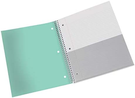Mint 100 Sheets 8 x 11 200 Pages College Ruled Office Depot Brand Stellar Poly Notebook