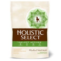 Holistic Select Lamb Meal & Rice Formula With Oatmeal 22/15 For Dogs 70%OFF