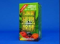 富士薬品 乳酸菌植物醗酵エキス40 120粒入 3個セット B01MTK5H3D