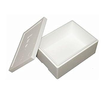 Premium Caja Styropor y poliestireno Caja/térmica - 10,5 L - Talla 6: Amazon.es: Productos para mascotas