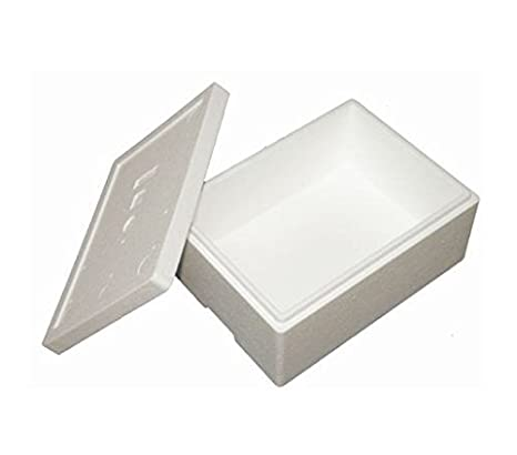 Premium Caja Styropor y poliestireno Caja/térmica - 10,5 L - Talla ...