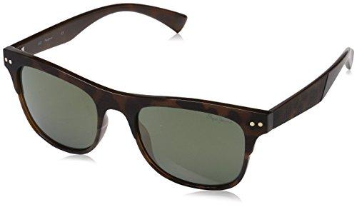Jeans Marrón 53 Pepe de Sunglasses Dave Gafas para Tort Hombre Sol OPRPpxqd