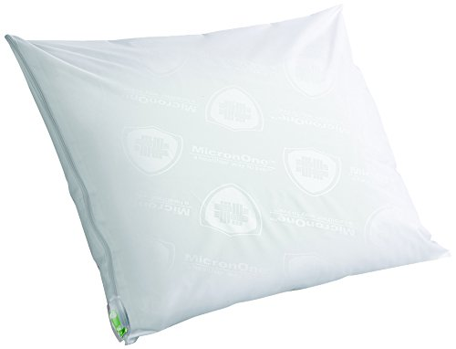 Clean Rest SimpleWater-Resistant, Allergy and Bed Bug Blocking Pillow Encasement, Queen