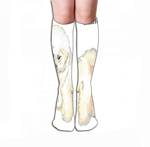 Xunulyn Men Women Outdoor Sports High Socks Stocking Colored Decorative Standing Portrait Dog Bichon Frise Profile Colorful Isolated White Background Tile Length 19.7