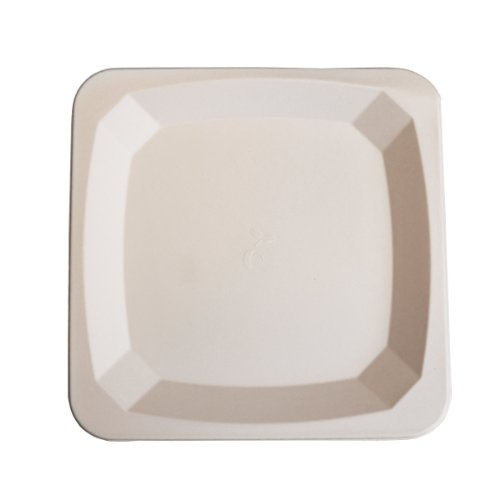 eco Kloud 10'' inch Bagasse Sugarcane Fiber Square Plate (Pack of 500) by Eco Kloud