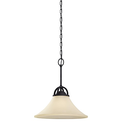 Sea Gull Lighting 65375-839 Somerton One-Light Pendant with Cafe Tint Glass Shade, Blacksmith Finish