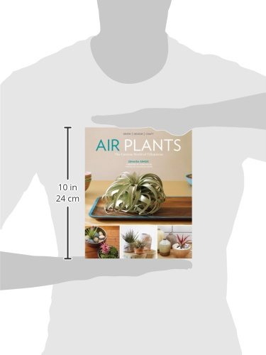 Air Plants: The Curious World of Tillandsias by Workman Publishing/Timber Press (Image #7)