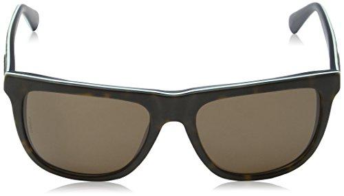 Dolce & Gabbana Sonnenbrille URBAN (DG4229) 286773: Tortoise On Matte Petroleum