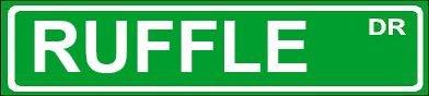 novelty-ruffle-6-wide-magnet-of-street-sign-design