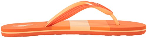 Polo Ralph Lauren Heren Whitlebury Flip-flop Oranje / Multi