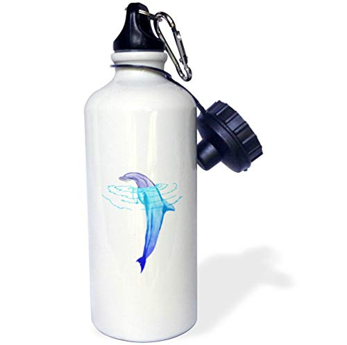3dRose Macdonald Creative Studios – Marine Animals - A Beautiful Swimming Bottlenose Dolphin for Anyone who Loves Animals. - 21 oz Sports Water Bottle (wb_291873_1) by 3dRose