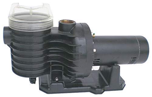 Dayton 3 HP In-Ground Swimming Pool Pump, 3-Phase, 9.8-9.3/4.65 Amps - 5PXE9 (Swimming Motor Pump Pool Phase)