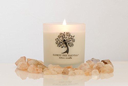 - Element Tree Essentials Lotion Candle Premium Sweet Lemongrass (10.5 oz)