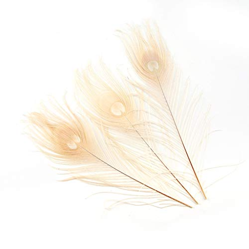 Shekyeon 10-12inch Dyeing Peacock Feathers Bleached Plume Wedding Table Centerpiece Pack of 10(off - Peacock Centerpieces Feather