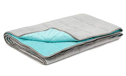 LUXOME Kids Weighted Blanket with Integrated Minky Cover | 8lbs | 42