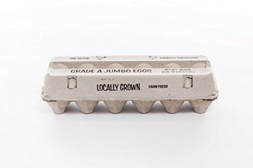 - Guardian Generic A Jumbo Egg CARTONS by Falcon PACKAGING-125pcs